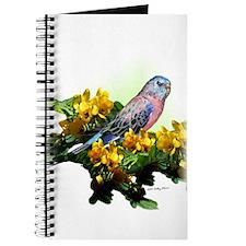 Bourke Parakeet - Journal