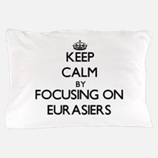 Keep calm by focusing on Eurasiers Pillow Case