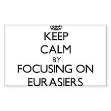 Keep calm by focusing on Eurasiers Decal