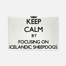 Keep calm by focusing on Icelandic Sheepdo Magnets