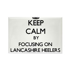 Keep calm by focusing on Lancashire Heeler Magnets