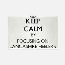 Keep calm by focusing on Lancashire Heeler Magnets