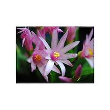 Pink Sunrise Cactus Flowers 5'x7'Area Rug