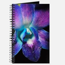 Purple Orchid Close Up Journal