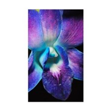 Purple Orchid Close Up Decal