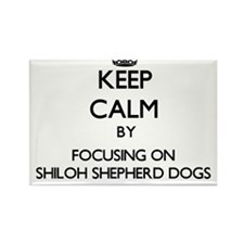 Keep calm by focusing on Shiloh Shepherd D Magnets