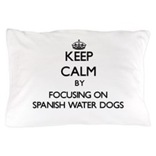 Keep calm by focusing on Spanish Water Pillow Case