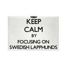 Keep calm by focusing on Swedish Lapphunds Magnets