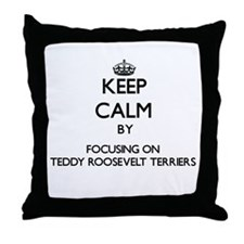 Keep calm by focusing on Teddy Roosev Throw Pillow