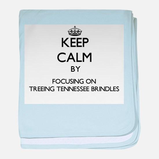 Keep calm by focusing on Treeing Tenn baby blanket