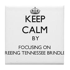 Keep calm by focusing on Treeing Tenn Tile Coaster
