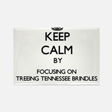 Keep calm by focusing on Treeing Tennessee Magnets