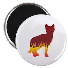 Sokoke Flames Magnet