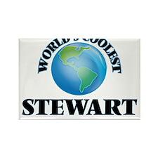World's Coolest Stewart Magnets