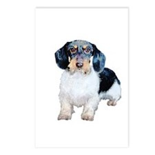 Wire Haired Dachshund Dog Postcards (Package of 8)