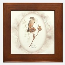 Say's Phoebe Framed Tile