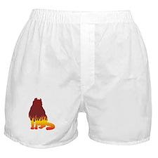 Curl Flames Boxer Shorts