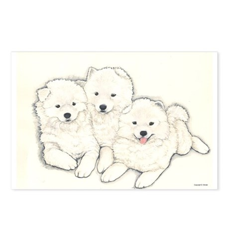Samoyed Puppies Postcards (Package of 8)