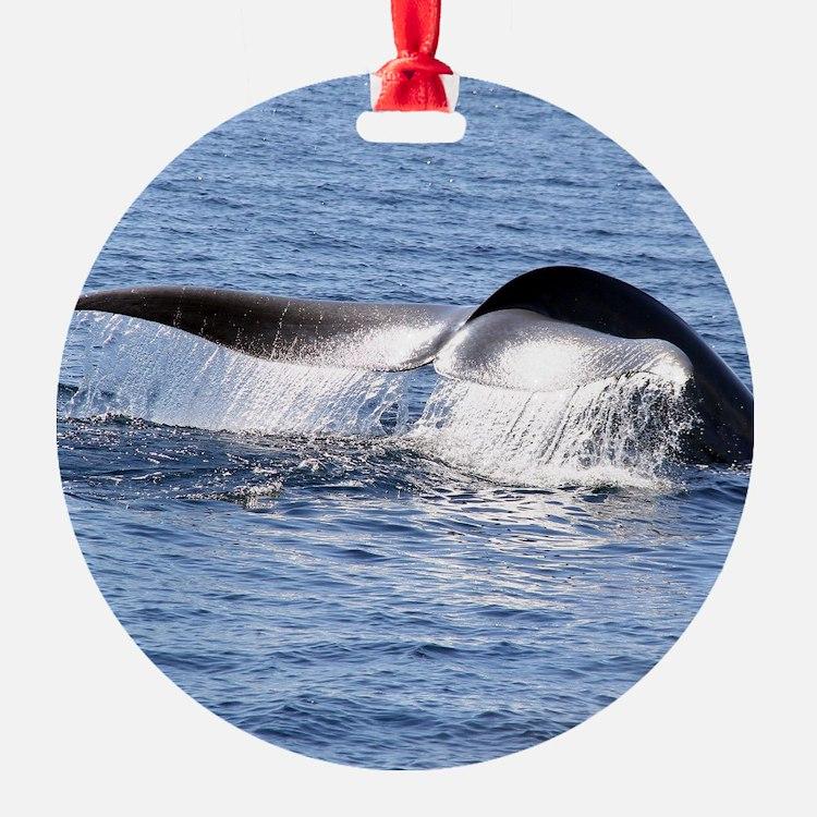 Blue Whale Flukes Ornament