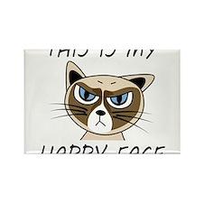 Cute Grumpy cat Rectangle Magnet (10 pack)