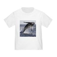 Humpback Breaches T-Shirt