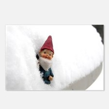Snowbound Hector Postcards (Package of 8)