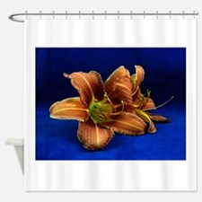 daylily 3 Shower Curtain