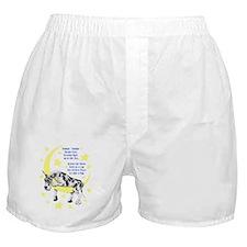 Great Dane Harle Twinkle Boxer Shorts