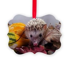 Unique Hedgehog Ornament