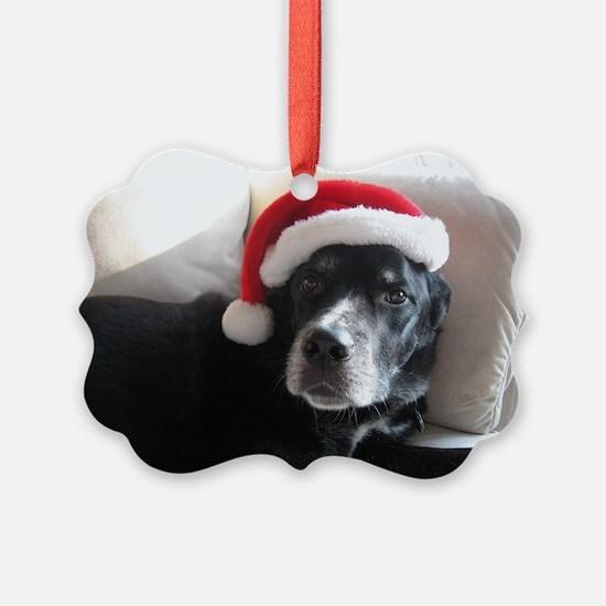 Cute Rottweiler dog breed Ornament