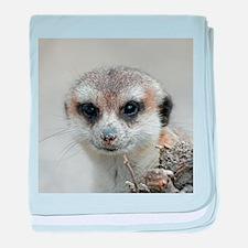 Meerkat001 baby blanket