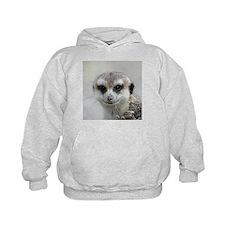 Meerkat001 Hoody