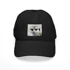 Meerkat001 Baseball Cap