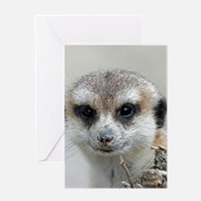 Meerkat001 Greeting Cards