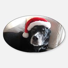 Santa Dog Decal