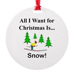 Christmas Snow Round Ornament