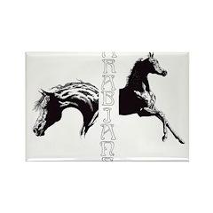 arabian & foal w/text Rectangle Magnet
