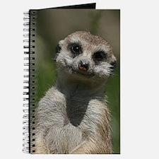 Meerkat004 Journal