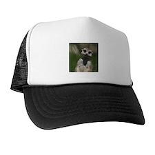 Meerkat004 Hat