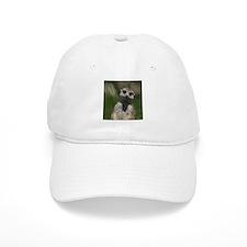 Meerkat004 Cap