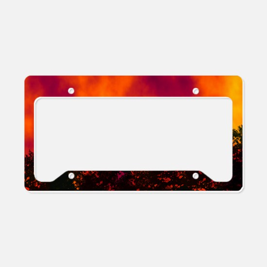 Wildfire License Plate Holder