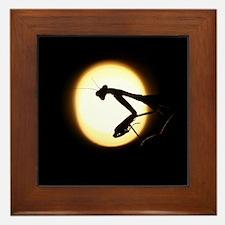 Praying Mantis Silhouette Framed Tile