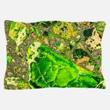 Green Sea Sediment Agate Pattern Pillow Case