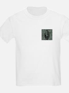 STARTREK BORG HULL T-Shirt