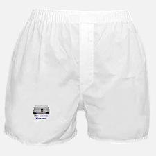 The Lincoln Memorial Boxer Shorts