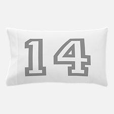 14 Pillow Case