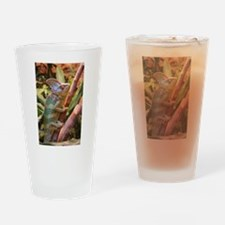 colorful chameleon Drinking Glass