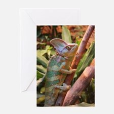 colorful chameleon Greeting Cards
