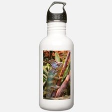 colorful chameleon Water Bottle