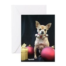 Funny Chihuahua christmas Greeting Card
